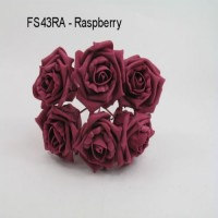FS43RS  COTTAGE ROSE IN RASPBERRY COLOURFAST FOAM