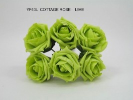 YF43L- QUALITY  COTTAGE ROSE IN LIME GREEN COLOURFAST FOAM