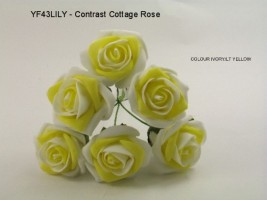 YF43LILY -Quality  6 Contrast Cottage Rose in Light Yellow and Ivory  Colourfast foam by Bridalcraft
