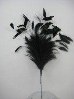B1 LARGE HACKLE AND COQUE FEATHER MOUNT IN BLACK