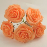 YF159AP  OPEN ROSE IN APRICOT COLOURFAST FOAM