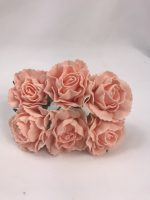YF167 Carnations