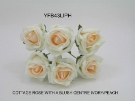 YFB43LIPH  6 x 6 CM IVORY COTTAGE ROSE WITH A BLUSH PEACH CENTRE IN COLOURFAST FOAM